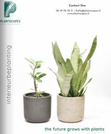 brochure-lease-plantscapes-plantenverhuur