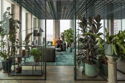 kamer-verdeler-interieurbeplanting-plantscapes-routing-plantenverhuur