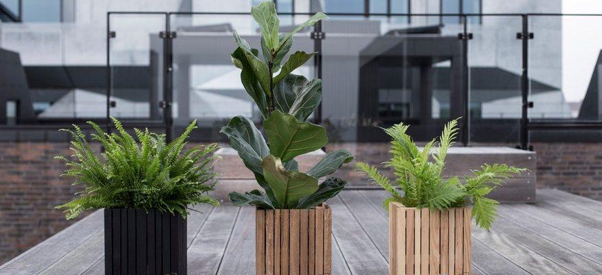 Potten Voor Planten.Styling En Thema S Met Plantenbakken En Potten Plantscapes